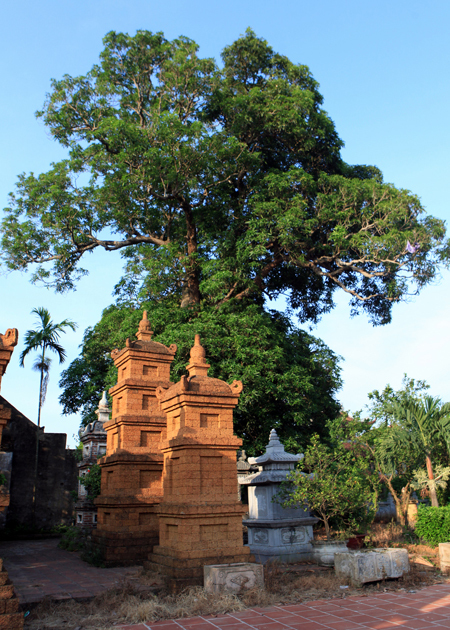 The temple famous for terracotta statues-08