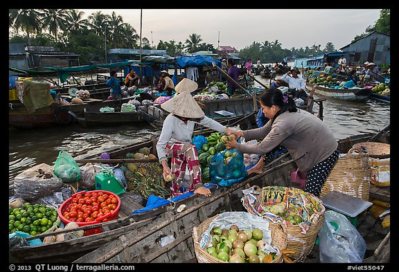 Fruit being sold from boat to boat, Phung Diem floating market. 芹苴, 越南