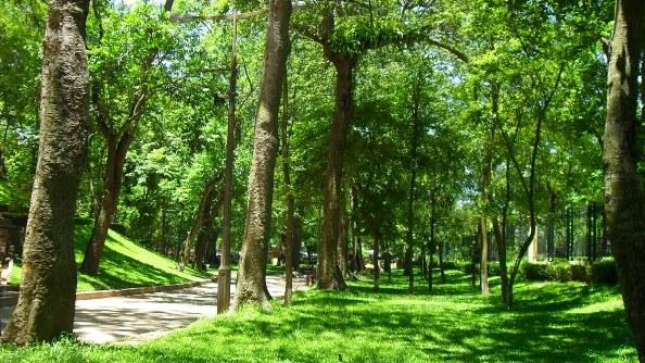 Bach Thao Parc