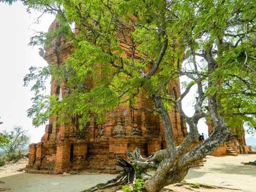 Cham complejo de la torre Po Klong Garai en Ninh Thuan-06