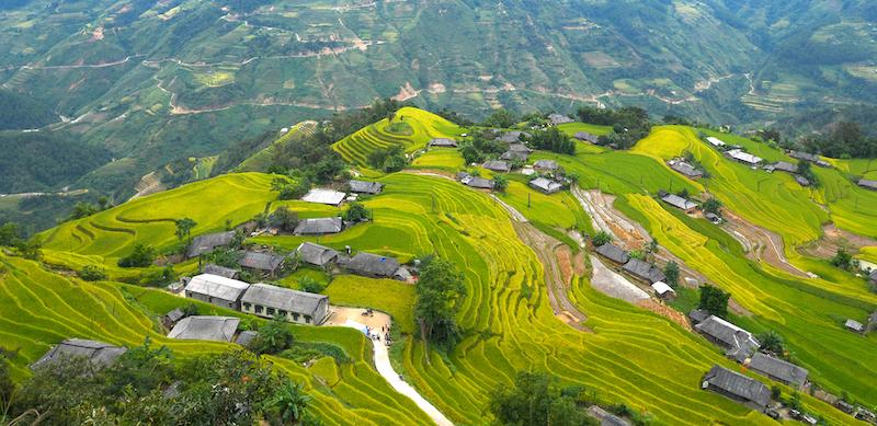 黄素披, 哈江省