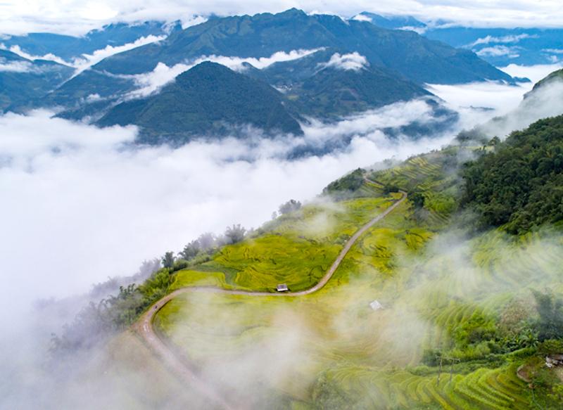 you你, 蝙蝠聊天, Lao Cai province